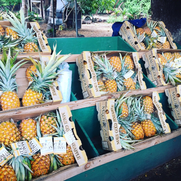 Pineapples at a local fruit stand.